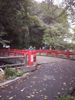 見沼氷川公園2